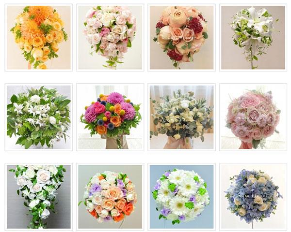 コータフラワー(Cota Flower)・ギャラリー